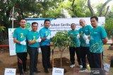 PLN UIW Sumbar semarakkan bulan K3 dengan gerakan menanam pohon
