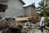 Belasan rumah di pantai Bangka Tengah terancam abrasi