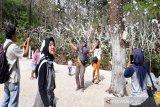 Unggulkan sektor pariwisata, Karanganyar targetkan kunjungan 3,5 juta wisatawan