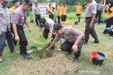 Cegah bencana, Polda Sultra tanam 1200 bibit pohon di bantaran Sungai Kaliwanggu