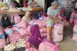 Harga bawang putih di Bandarlampung Naik Rp17 ribu