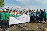 Peduli lingkungan, Bintraco Darma tanam bibit mangrove di Demak