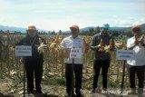 Pemkab Sigi apresiasi lembaga pendamping petani jagung