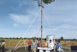 HPN 2020: hutan pers, Presiden Jokowi tanam pohon Marsawa yang sudah berusia 16 tahun