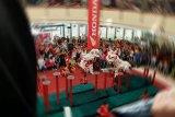 Aksi Barongsai meriahkan Cap Go Meh di Pekanbaru