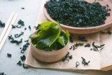 Khasiat rumput laut untuk perawatan kulit