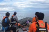 Seorang nelayan di Mamuju Tengah Sulbar dilaporkan hilang