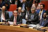 Rancangan resolusi DK PBB tekankan untuk kepentingan Palestina