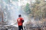 Empat titik panas Karhutla sambut kedatangan Presiden Jokowi