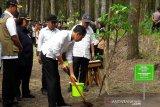 Presiden Jokowi  minta masyarakat terima kepulangan WNI setelah observasi di Natuna