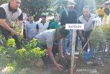 Polda dan IOF tanam ratusan bibit pohon eboni di Palu