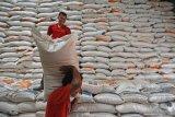 Stok beras Bulog di Kepulauan Sulawesi Utara aman