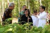 Presiden Jokowi ajak warga pulihkan aliran sungai