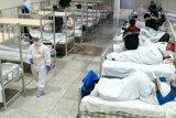 Dinkes: Lampung Timur aman dari virus corona