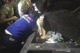 Polisi  masih selidiki penemuan orok bayi perempuan