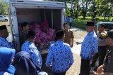 Operasi pasar bawang putih di Padang hingga 18 Februari, ini lokasinya