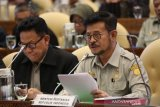Mentan Syahrul jamin ketersediaan pangan jelang Ramadhan-Lebaran