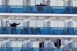 Giliran Australia evakuasi 200 warganya dari kapal pesiar Diamond Princess