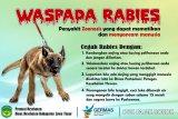 Pemkab Luwu Timur  minta warga waspada rabies