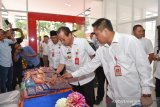 Gubernur sebut IKM coklat di Sulteng mulai bangkit