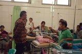 Serangan DBD di Sikka terus meluas