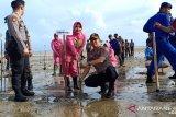 Polres Bangka Barat tanam 1.500 bibit mangrove