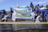 Polda Papua bantu 2.000 bibit ikan mujair untuk nelayan di Sentani