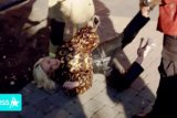 Ada ledakan kebocoran gas di audisi American Idol, Katy Perry jatuh ke tanah