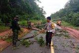 Personel TNI-Polri singkirkan pohon tumbang di Jalan Trans Papua