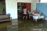 Sejumlah desa di Kudus tergenang banjir