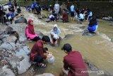 Ribuan ikan yang harga tujuh ons Rp1 juta dilepasliarkan