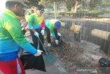 Pertamina Dumai gelar aksi bersihkan sampah areal kilang minyak