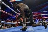 Rebut kembali gelar juara dunia kelas berat WBC, Wilder tantang Fury tarung ulang