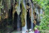 Punya karakter langka, Pemkab Probolinggo serius garap wisata air terjun Purba Tirai Bidadari