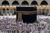Arab Saudi tangguhkan pelayanan umrah terkait virus corona