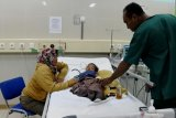 Serangan DBD di Kota Kupang terus meningkat