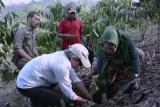 Rainforest Alliance dukung pendampingan Perhutanan Sosial di Lampung