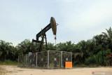Harga minyak dunia alami penurunan di tengah kekhawatiran permintaan