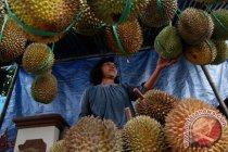 Mahasiswa Bengkulu olah biji durian jadi susu bergizi