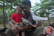 Taman burung Palembang pilih tutup saat libur Lebaran