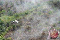 Padamkan kebakaran hutan Riau, KLHK kerahkan manggala agni