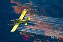 Petani rumput laut Indonesia tuntut atas tumpahan minyak di Australia