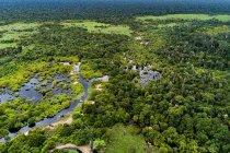 Gandeng KIFC, Tunas Sawa Erma dukung konservasi lahan gambut di Riau