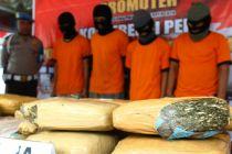 Ditpolair Polda Papua tangkap mahasiswi pengedar ganja