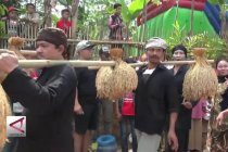 Mensyukuri hasil panen raya lewat tradisi seren taun