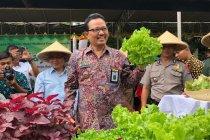 Di Yogyakarta, alokasi anggaran kegiatan kelurahan belum lima persen