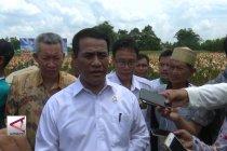 Mentan: Lahan rawa kekayaan besar Indonesia