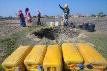 Ambil Air Bersih di Sumur Tengah Sawah