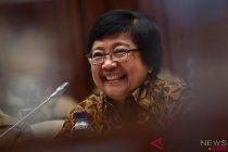 Menteri LHK sebut kayu bertahan meski ada gejolak ekonomi