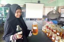 B2P2BPTH Yogyakarta proses biji nyamplung jadi bahan bakar